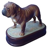 rare  1968 Worcester English bulldog Doris Lindner LE 9""