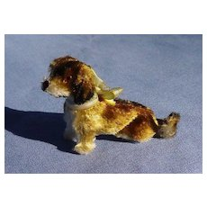 antique Wire Haired Dachshund salon dog French fashion doll companion Germany label