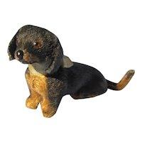 """Antique Dachshund salon dog Kestner Jumeau French fashion doll companion Germany label 3"""""""