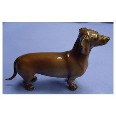 Dachshund dog mom Rosenthal Germany