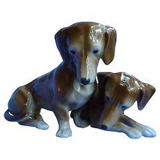 "Dachshund dog pair Germany 9"""