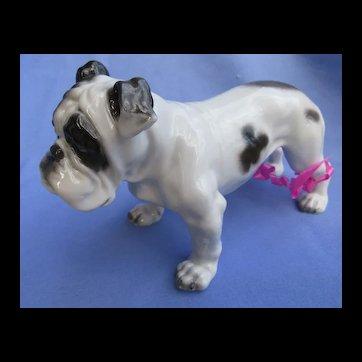 "1930s English Bulldog Rosenthal Germany 7"" dog"