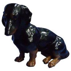 "Black tan Dachshund dog ENS Germany 8"""