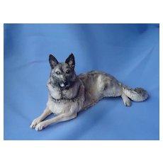 "Elkhound Spitz Akita Keeshond  German shepherd Eve Pearce dog 9"""