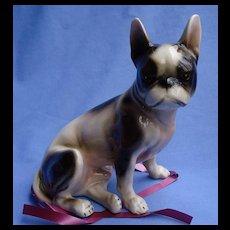 "French Bulldog Boston Terrier Keramos Austria dog 8"""