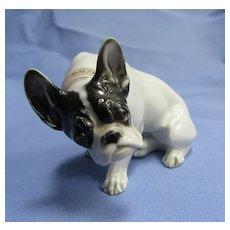 French Bulldog Rosenthal 1930s Germany Diller dog