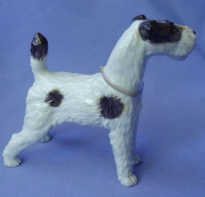 Wire Fox Terrier Augarten Wien Austria dog 7\