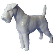 """Meissen Airedale Fox Irish Welsh Lakeland terrier Meissen  dog Germany 9"""""""