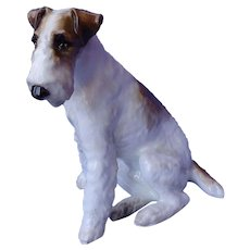 """9"""" wire haired Fox terrier Paragon England dog"""
