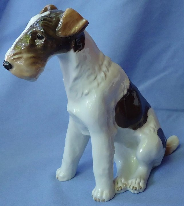 1950s Wire haired Fox terrier Jack Russell dog Schierholz Germany 9 ...