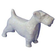 "1950s Sealyham Cesky terrier dog Germany 6"""