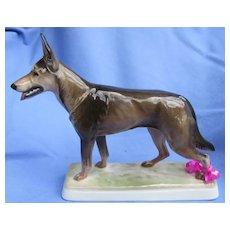 "1930 German Shepherd Belgian Malinois Alsatian Rosenthal  Germany 9"" dog"