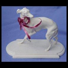 Whippet Italian Greyhound female dog  Boehm