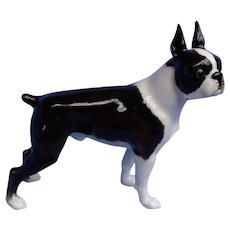 1950 Boston Terrier Hutschenreuther Germany dog