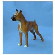 """1950s  Hutschenreuther Boxer dog Germany   6"""""""