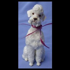 1950s white Poodle dog Hutschenreuther JHR Germany