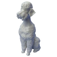1950s white Poodle dog Hutschenreuther Germany 7""