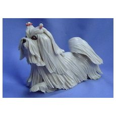 "Maltese Shih Tzu Lhasa Apso terrier dog Eve Pearce England 6"""