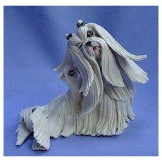 "Maltese Shih Tzu terrier dog Eve Pearce England 5"""