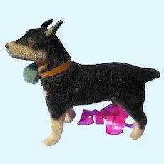 Antique MIN PIN Miniature Pinscher putz salon dog Kestner Jumeau French fashion doll companion Germany