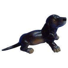 """black tan Dachshund Nymphenburg Germany puppy dog  5"""""""