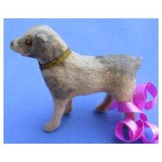 Antique PUG putz salon dog Kestner Jumeau French fashion doll companion Germany grey