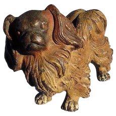 "bronze Pekingese Tibetan Spaniel Vienna Austria dog 4"""