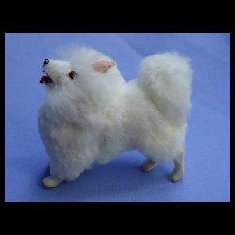 Antique SPITZ POMERANIAN salon dog Kestner Jumeau French fashion doll companion Germany label