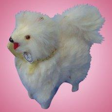 Pomeranian Spitz Samoyed salon dog Germany French fashion doll companion