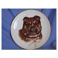 old Dresden plate Pug Bulldog Mastiff
