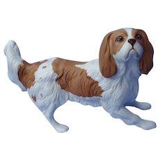 "Cavalier King Charles Spaniel dog Royal Doulton England 7"""