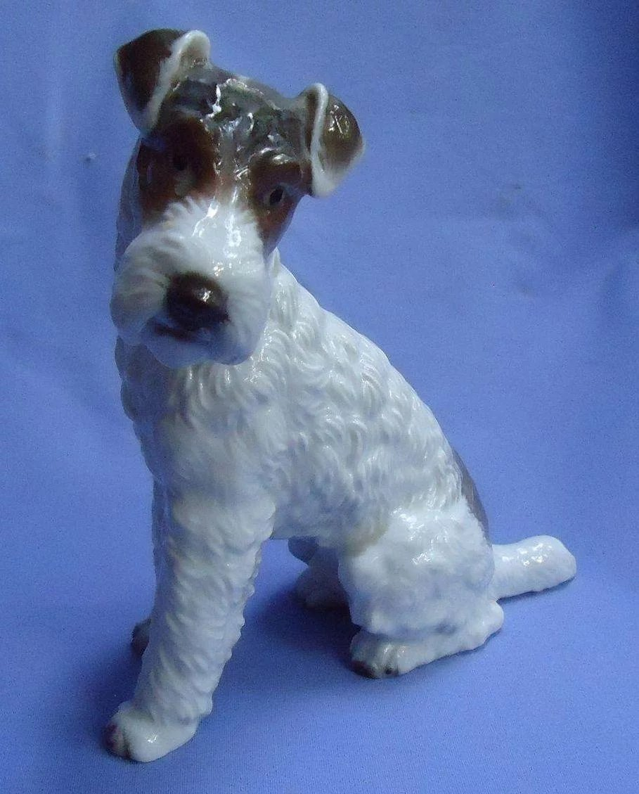 Wire Haired Fox Terrier Rosenthal dog Germany 7\