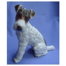 """Wire Haired Fox Terrier Rosenthal dog Germany 7"""""""