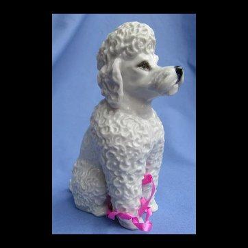 "1930s POODLE Rosenthal Germany 7"" dog"