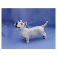 "1930 Rosenthal  Scottish terrier Scotty dog 6"""