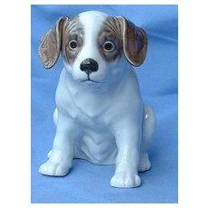 """English Setter Springer spaniel German Pointer puppy Denmark dog  sample 8"""""""