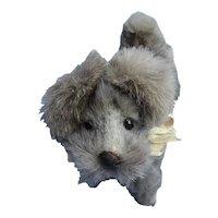 Antique Schnauzer salon dog Bru Kestner French fashion doll companion Germany label