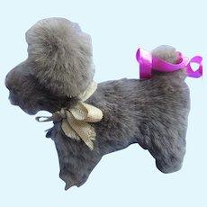 "Antique Skye silky Terrier salon dog Bru Kestner French fashion doll companion Germany label 3"""