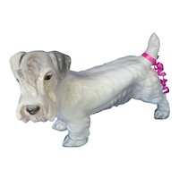 "Sealyham  Cesky terrier Germany dog 8"""