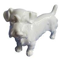 "Sealyham  Cesky terrier Augarten Austria 6"" dog"