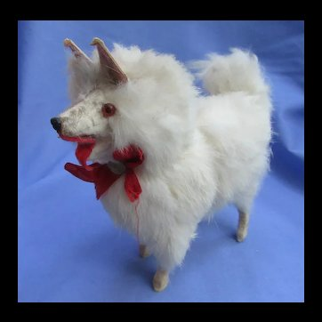 "old fur Spitz Samoyed Pomeranian salon dog French fashion doll companion Germany 6"""