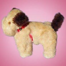 Sealyham  Cesky terrier salon dog French fashion doll companion Germany label