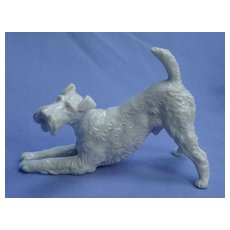 """Wire Haired Fox Terrier Rosenthal Germany play bow dog 5"""""""