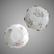 2 -DRESDEN Germany Gilded Plates, Floral Design c.1896