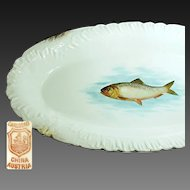 Bawo 'n Dotter's Art Nouveau FISH PLATTER 18 in. Long c.1898