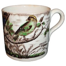 Early Staffordshire Childs ABC Mug CRESTED WREN Brownhills Pottery Co 1880