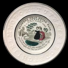Staffordshire Flowers Never Fade Plate ~ Meekness 1830