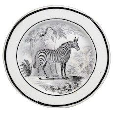 Rare Creamware Childs Plate ZEBRA Staffordshire Transferware 1820