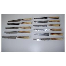 A French Antique Horn Handle Dinner Knife Set