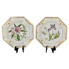 Pair Spode Cabinet Collection Botanical Plates